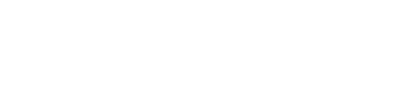 Zoomph Partner Logo