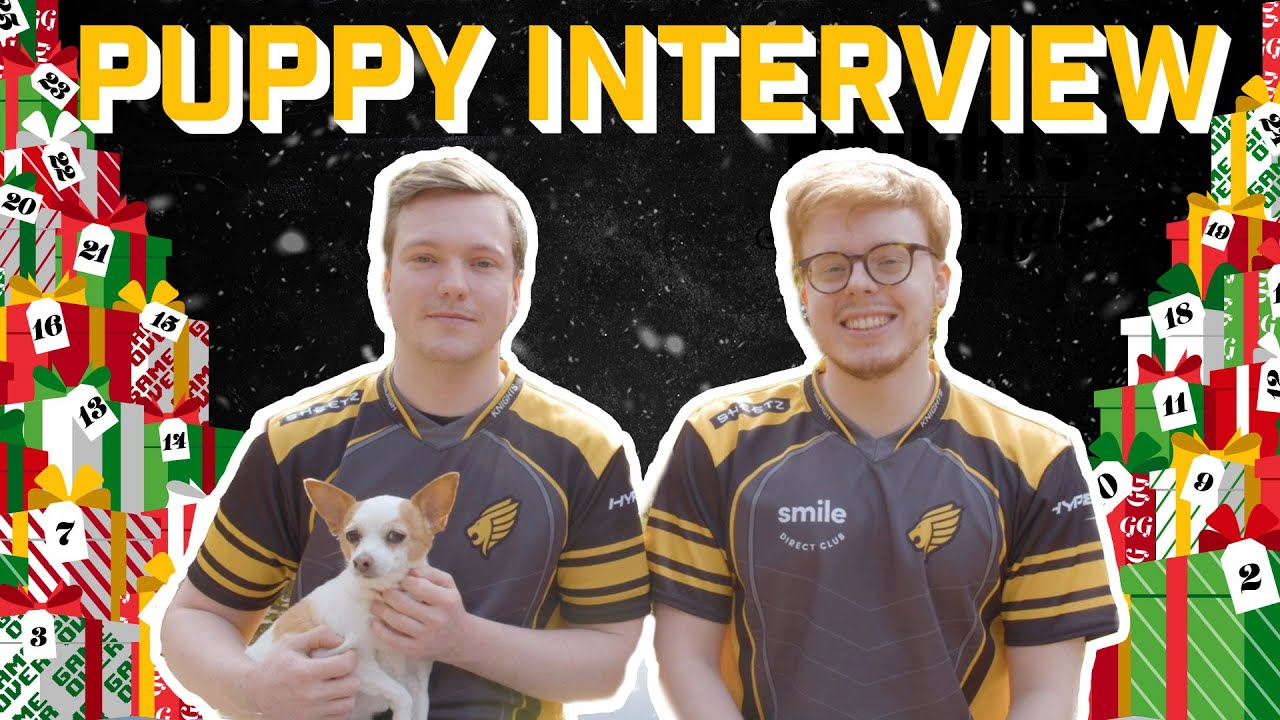 Puppy Interview Thumbnail